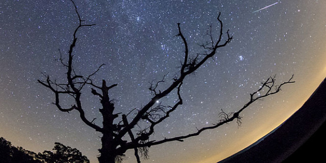 Forr�s: Lad�nyi Tam�s/Astrophoto.hu