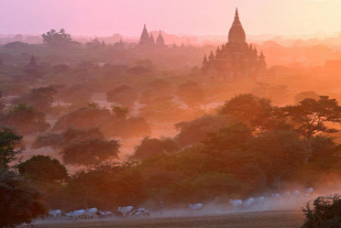 Forr�s: AFP/Ye Aung Thu