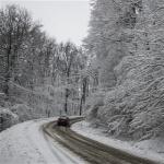 Forr�s: MTI/S�ki Tam�s