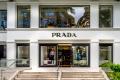 Harmatgyenge �vet z�rt a Prada