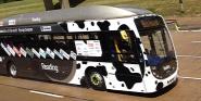 Forr�s: Bus Hound