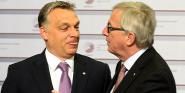 Forr�s: AFP/Janek Skarzynski