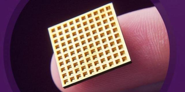 Forr�s: Microchips Biotech