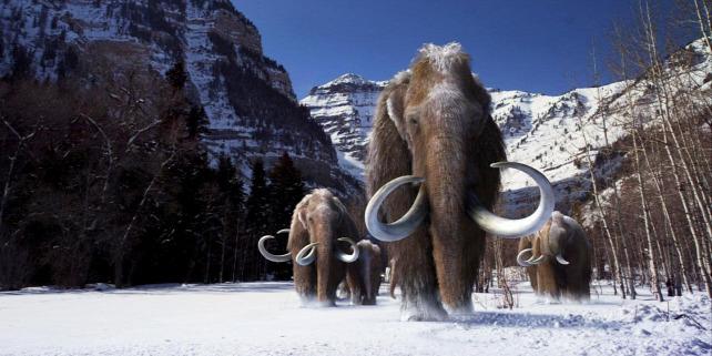 Forrás: Giant Screen Films (C) 2012 D3D Age, LLC