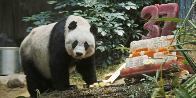 Forr�s: MTI/AP/Kin Cseung