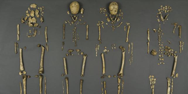 Forr�s: Smithsonian Int�zet