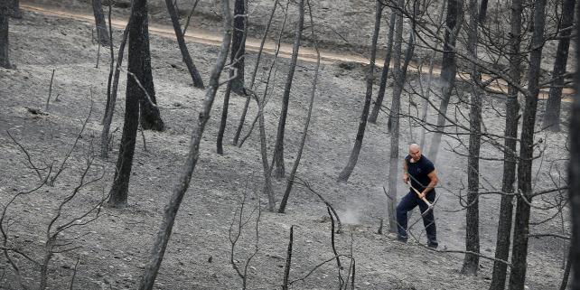 Forr�s: MTI/EPA/EFE/Susana Saez