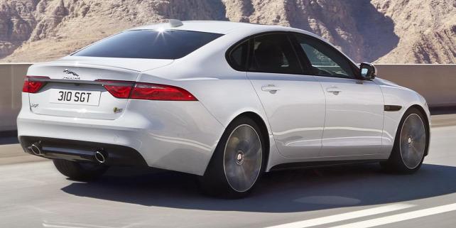 Forr�s: Jaguar