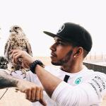 Forr�s: Instagram/Lewis Hamilton