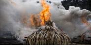 Forr�s: MTI/EPA/Dai Kurokawa
