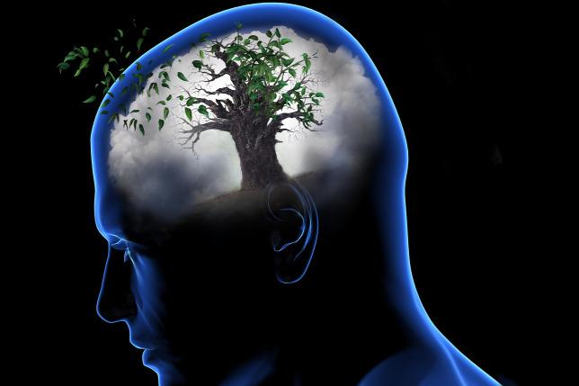 A herpeszvírusok felelősek az Alzheimer-kórért?