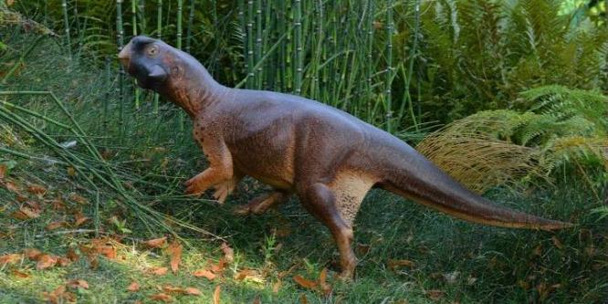 Minden eddiginél pontosabban modelleztek egy dinót