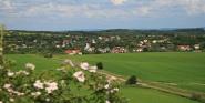 Forr�s: Mr�zik Orsolya