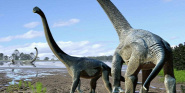 Forr�s: Travis Tischler/Australian Age of Dinosaurs Museum of Natural History