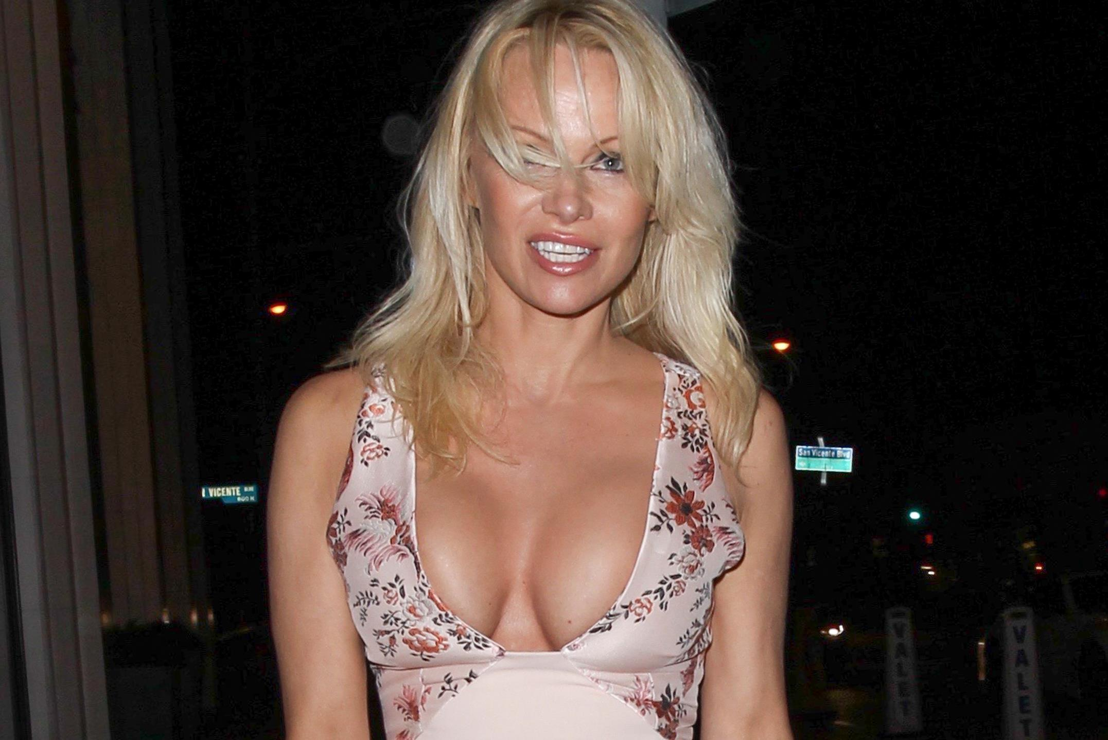 Pamela Anderson Sex Stories