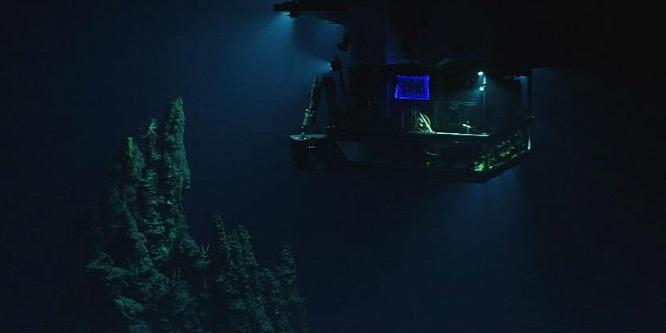 Mindenkit megdöbbentett, amit a mélytengeri állatokban találtak