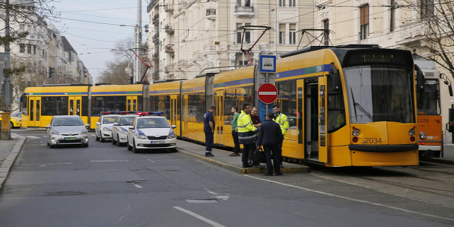 Forrás: Polyák Attila