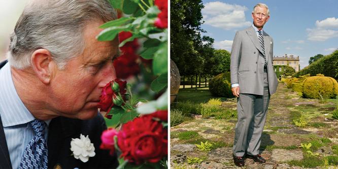 Károly herceg hobbija a biokertészkedés, kertészeti boltjával jótékony célokat támogat