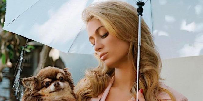 Nagyon készül valamire Paris Hilton