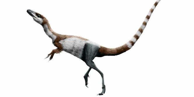 Mosómedve álarcot viselt a kréta kori dinoszaurusz