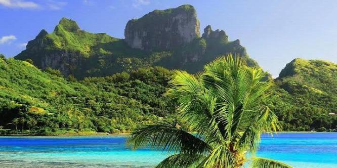 A súlyosan fenyegetett gerincesek csaknem fele szigeteken él