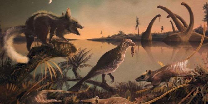 Kocsmatulajdonosról nevezték el a legősibb emlősfajt