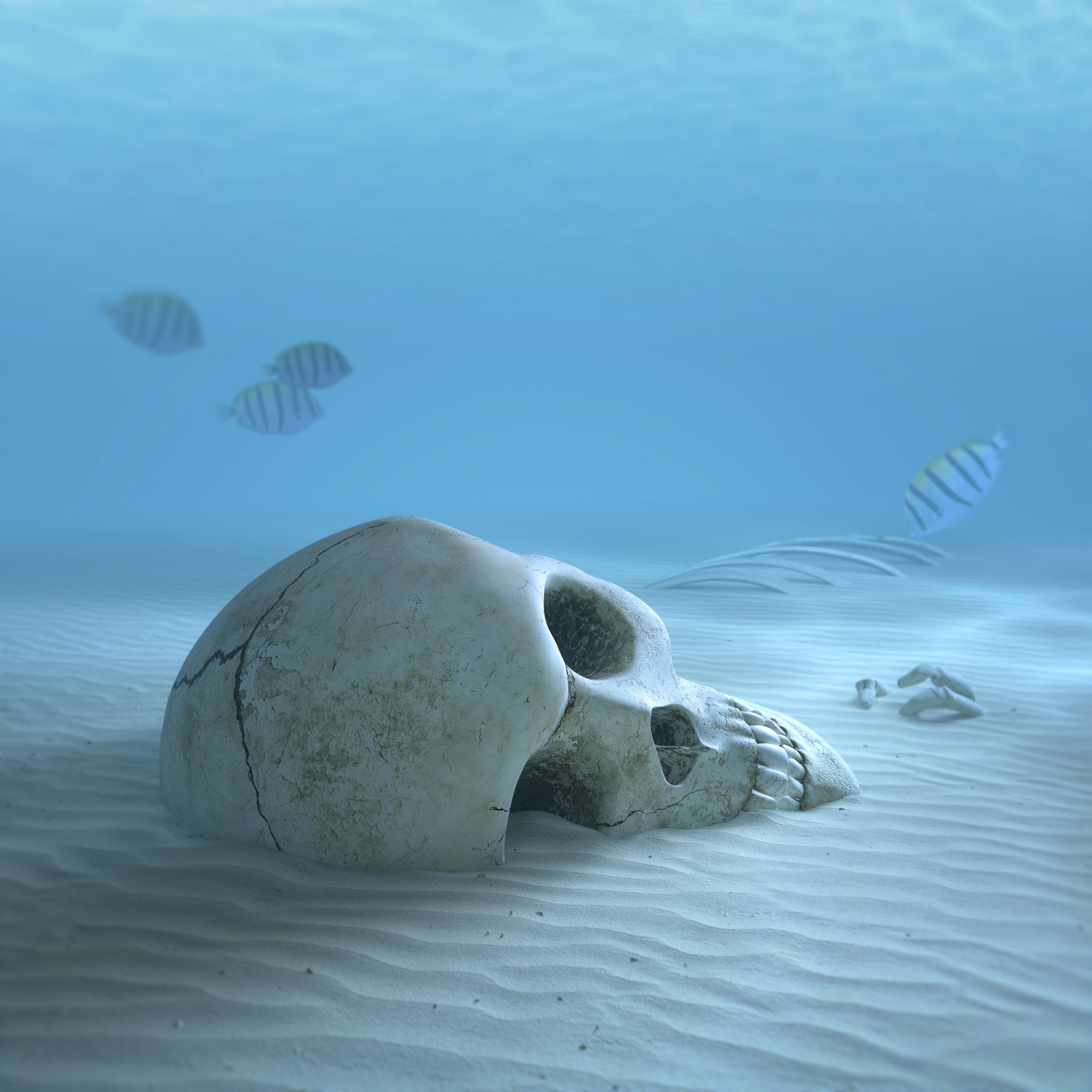 Friss hírek: A jelenség az egész élővilágot veszélyezteti.