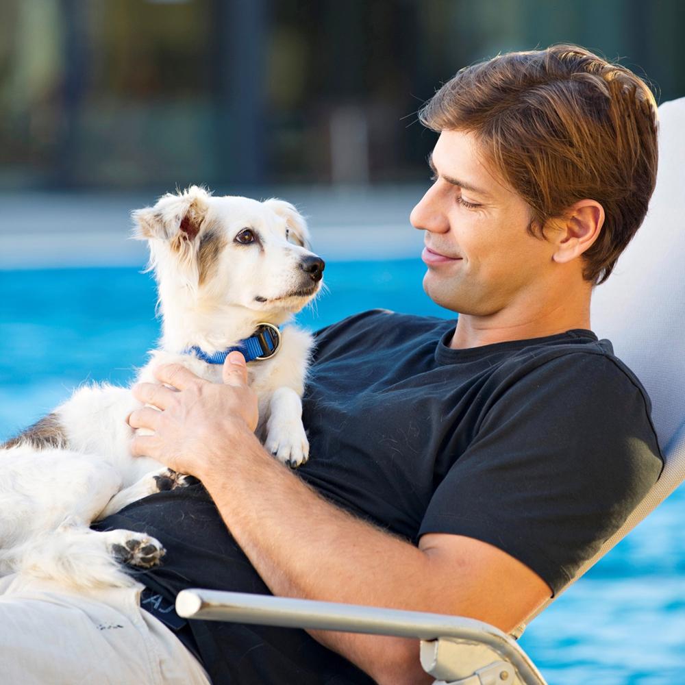 vizilabdás naptár Ki az aranyosabb: a vízilabdás fiúk vagy a kutyusok? vizilabdás naptár